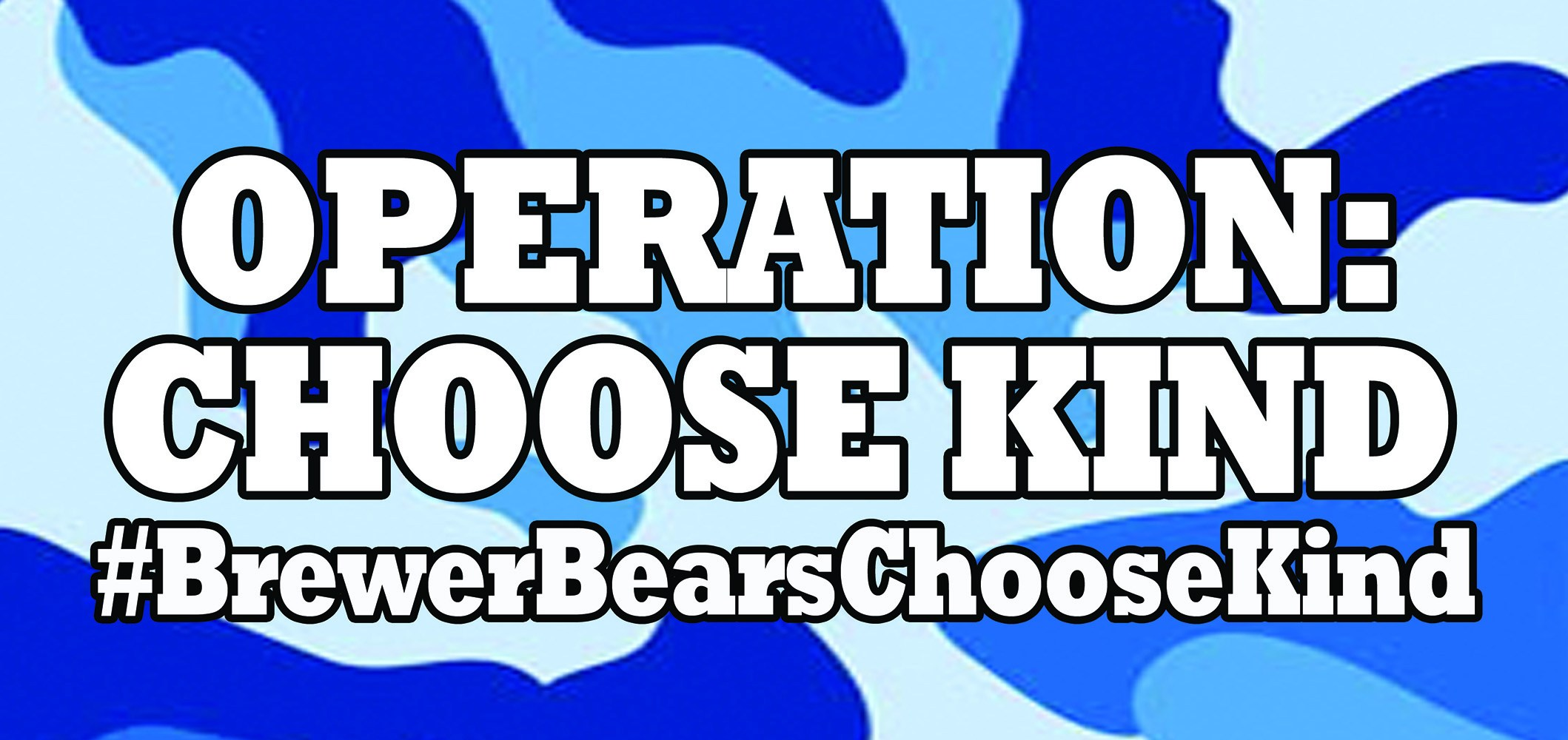 Operation Choose Kind Flyer