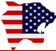 panther shaped USA flag