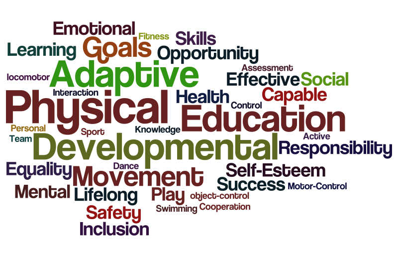 the influences of physical education in school curriculum on teenager development He focused attention on the role of physical growth, the biologic changes of puberty, brain development, genetic influences, sleep and biological rhythms, physical health, social transitions.