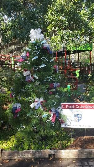 Christmas Tree Oaks.jpg
