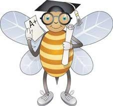 spelling bee w_ cap.jpg