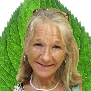 Katherine Pipkin's Profile Photo