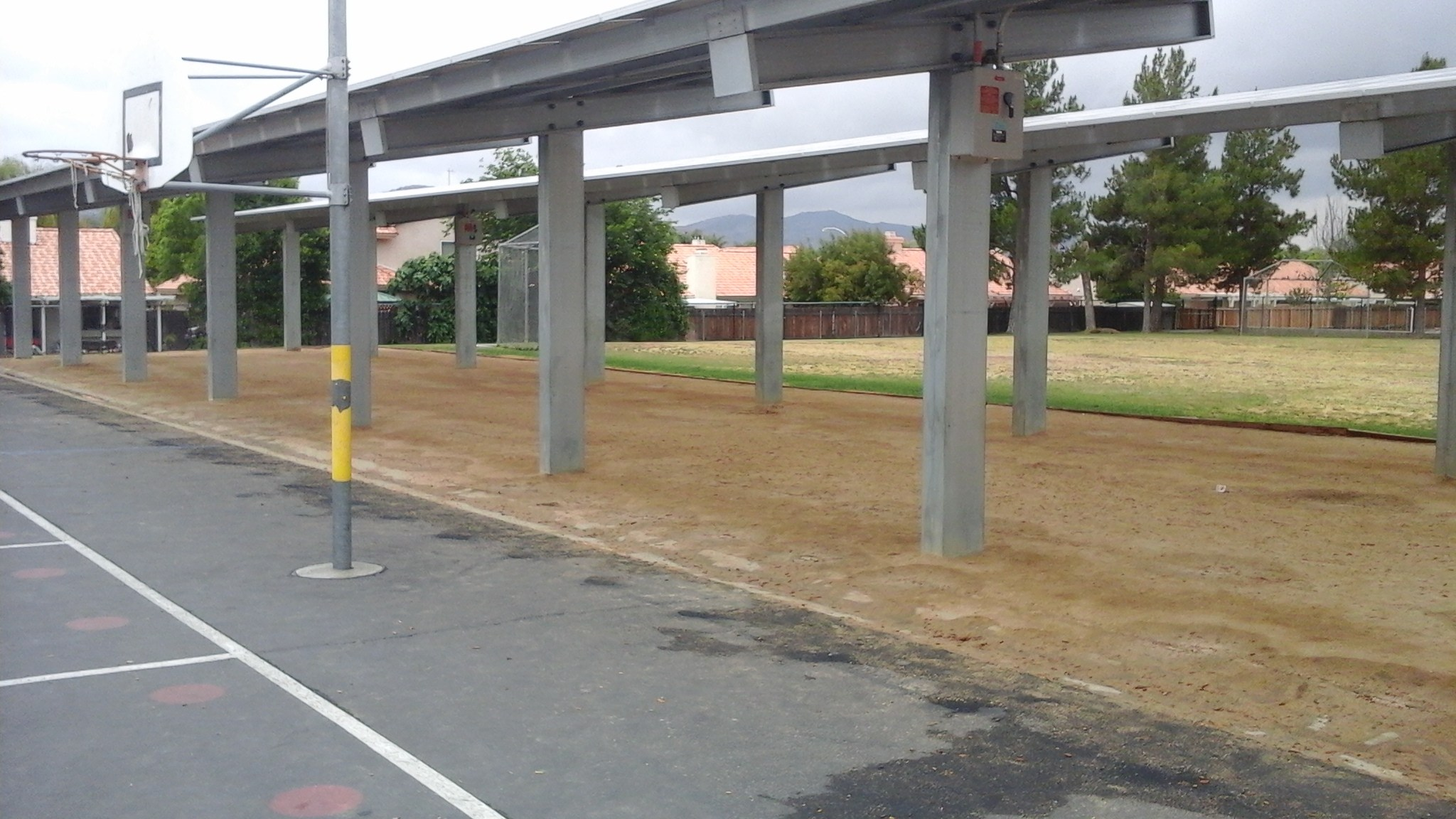 Drought resistant turf project - Fruitvale Elementary