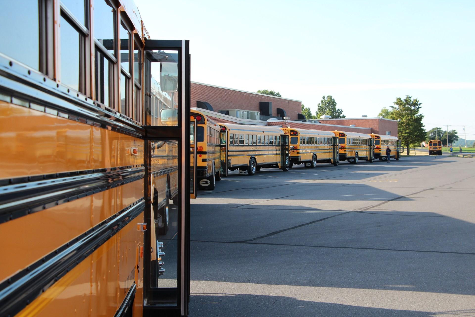 TSD Bus Fleet 1