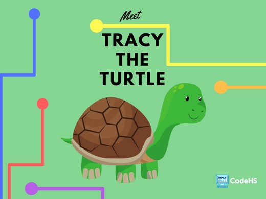 Program in Python with Tracy the Turtle