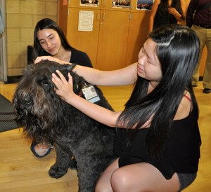 Sierra Vista High School NAMI Club Vice President Marisol Rodriguez, left, and Secretary Paula Chen, pet Gunny, a therapy dog who visited their club on Oct. 23.