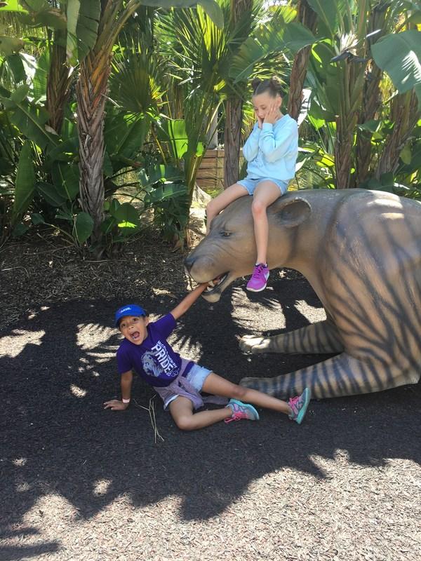 2nd Grade San Diego Zoo Fieldtrip ~ May 25, 2017 Thumbnail Image
