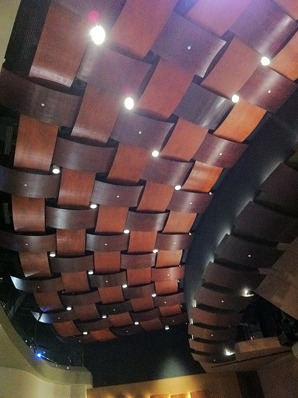 ceiling of the fine arts center