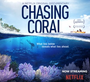 Chasing Coral.png