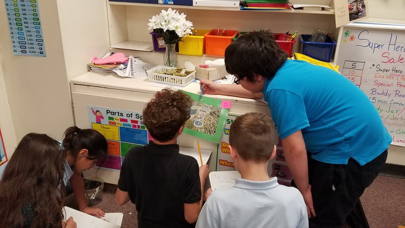 3rd grade cooperative learning Thumbnail Image