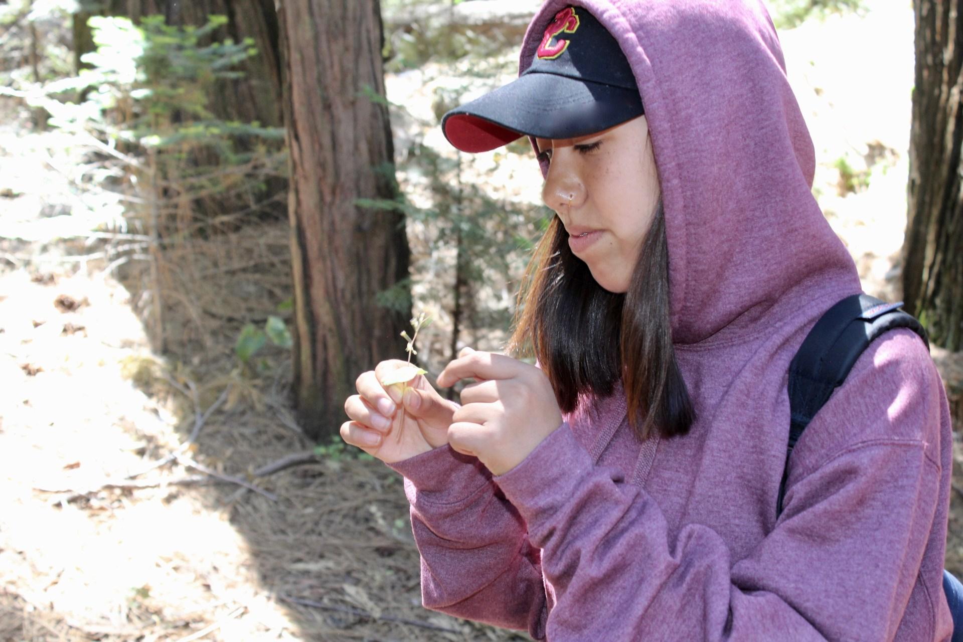 girl studies plant life