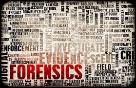 Forensics Image 3