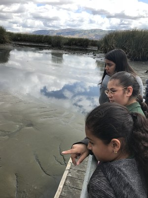 students looking at the tide