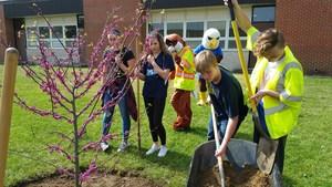 Planting the tree 2.jpeg