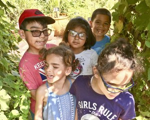 Students of Ms Mather's class at the Queens Botanical Garden