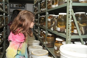 a photo of a girl in a storage area at the LSU Girls Night at the Museum