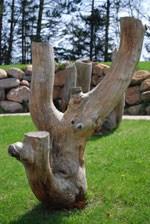 Cedar Crest Landscaping