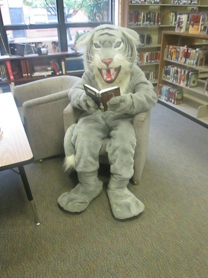 Wildcats Read