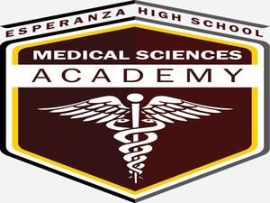MSA Academy Logo