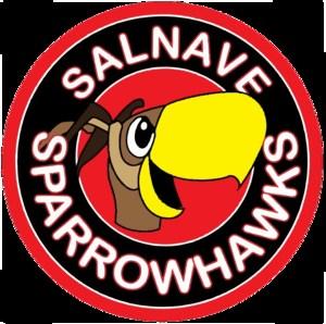 Salnave Logo.png
