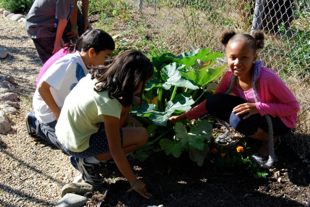 Hands-on learning in the garden.
