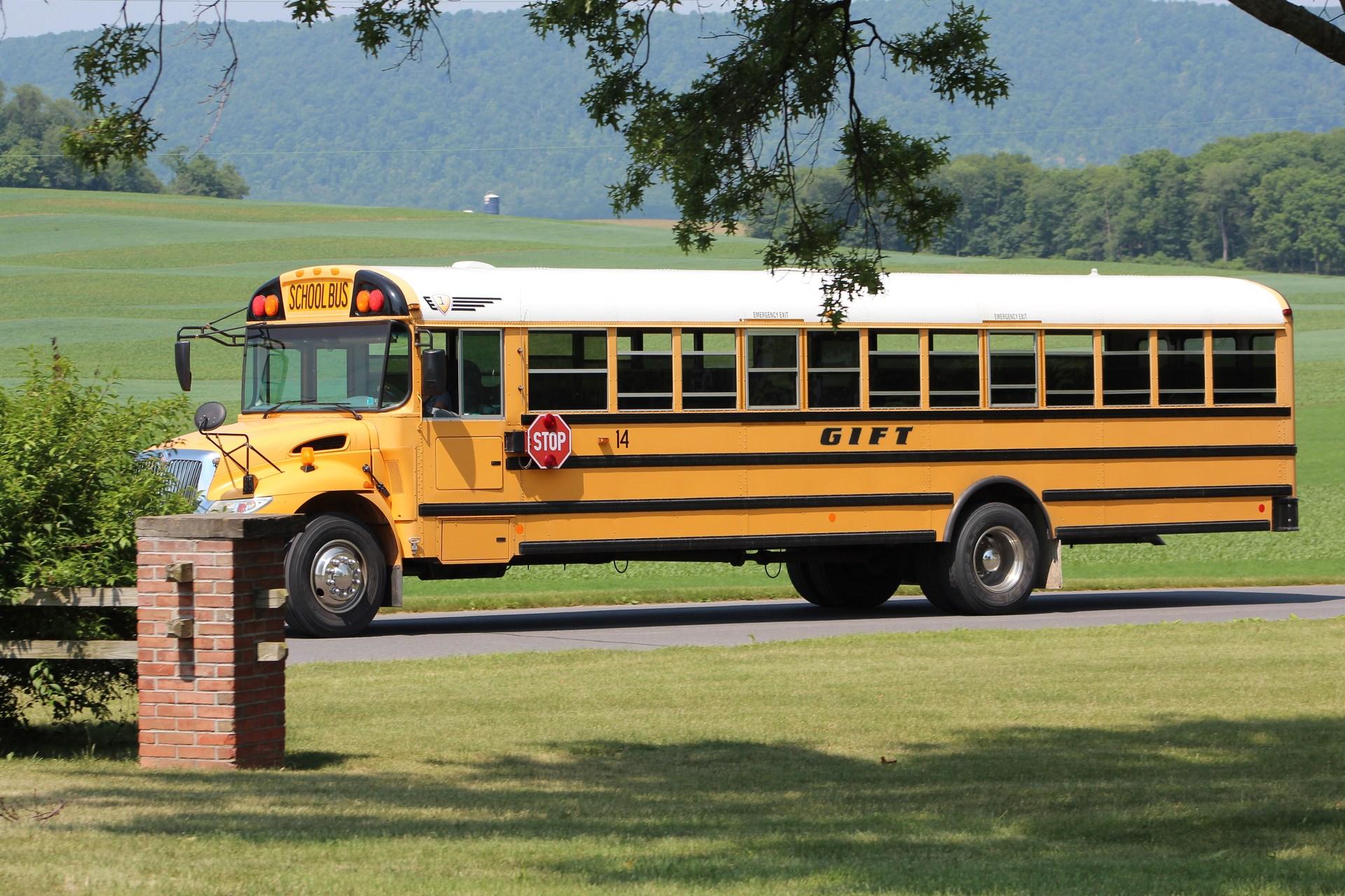 Miss Meladie - Bus #14