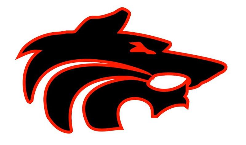 Wolf Logo Image