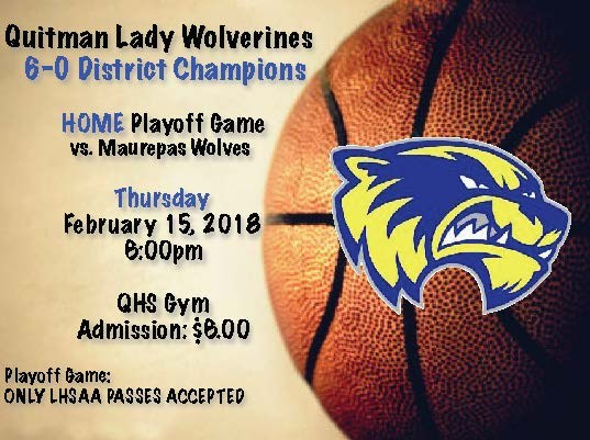 QUITMAN LADY WOLVERINES - DISTRICT CHAMPIONS Thumbnail Image
