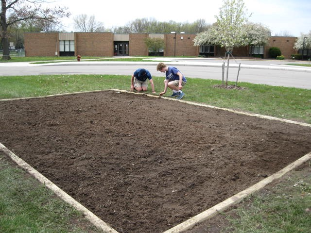 Preparation and planting