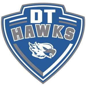DT Logo Small.jpg