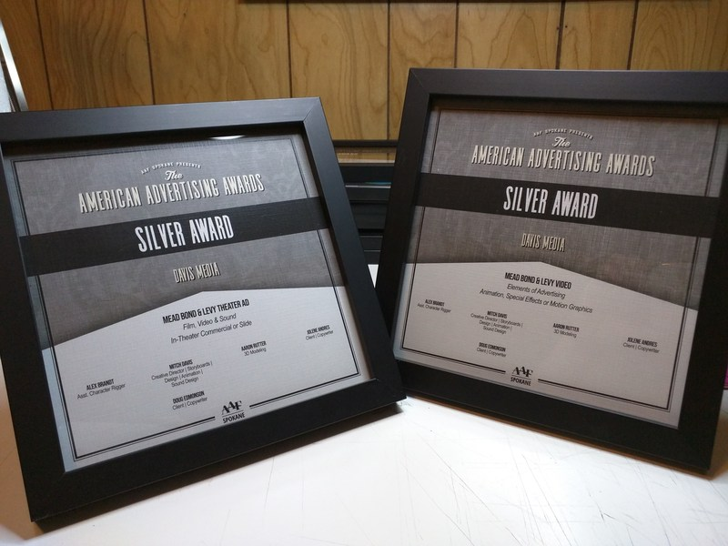 Gold & Silver Awards for Mead SD Videos Featured Photo