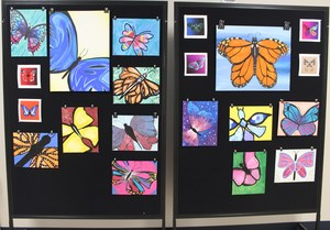 Butterfly creations on display