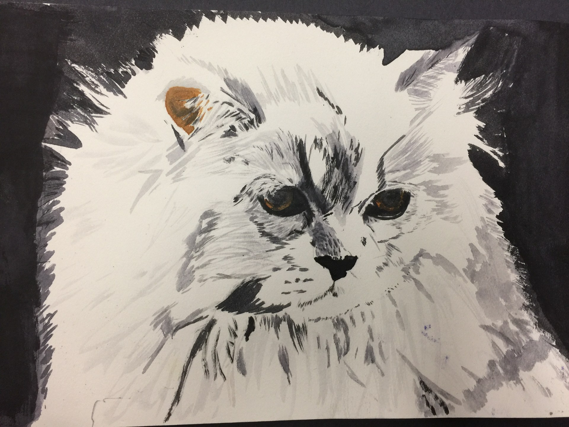 Watercolor painting of a white cat.