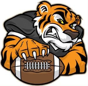 Tiger Football.jpg