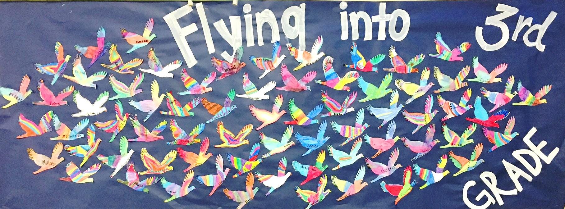 Third Grade Birds