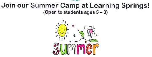 Learning Springs Summer Camp Logo