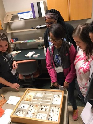 Students talking to graduate student while looking at insects in a box
