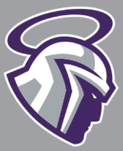 mascot - gray1.jpg