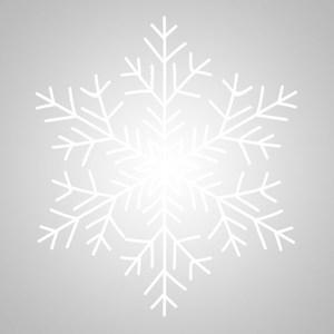 news-2017-snowflake.jpg