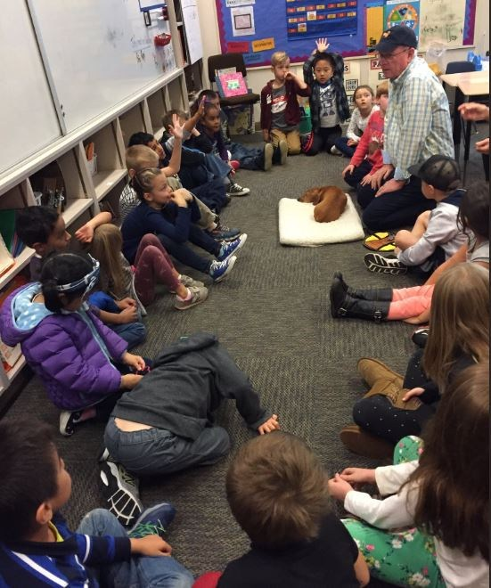 Our schools are honoring Disability Awareness Month with a variety of activities! On October 2nd, Rusty the therapy dog visited students at Sunnyside! Thumbnail Image