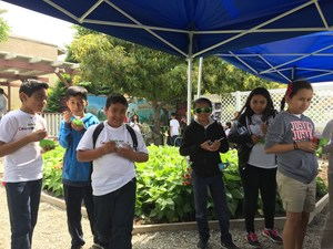 Fourth-graders from Charles Bursch and De Anza elementary schools sample the summer melon cucumber salad during the Garden Gourmet culminating event on May 5 at the Baldwin Park Community Garden. The year-long program teaches students about food preparation and healthy nutrition.