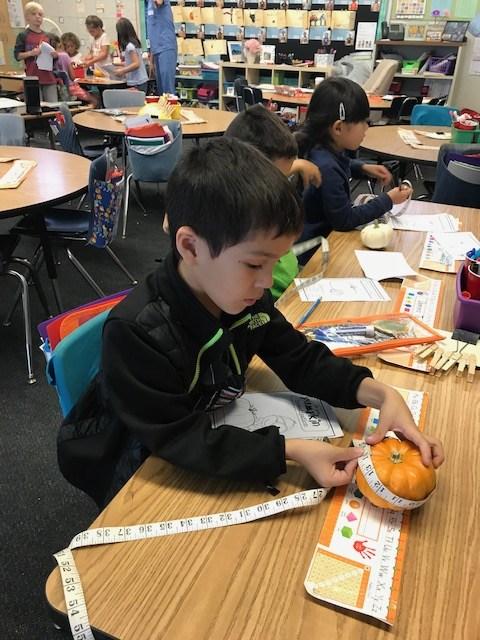 Student measuring a pumpkin.