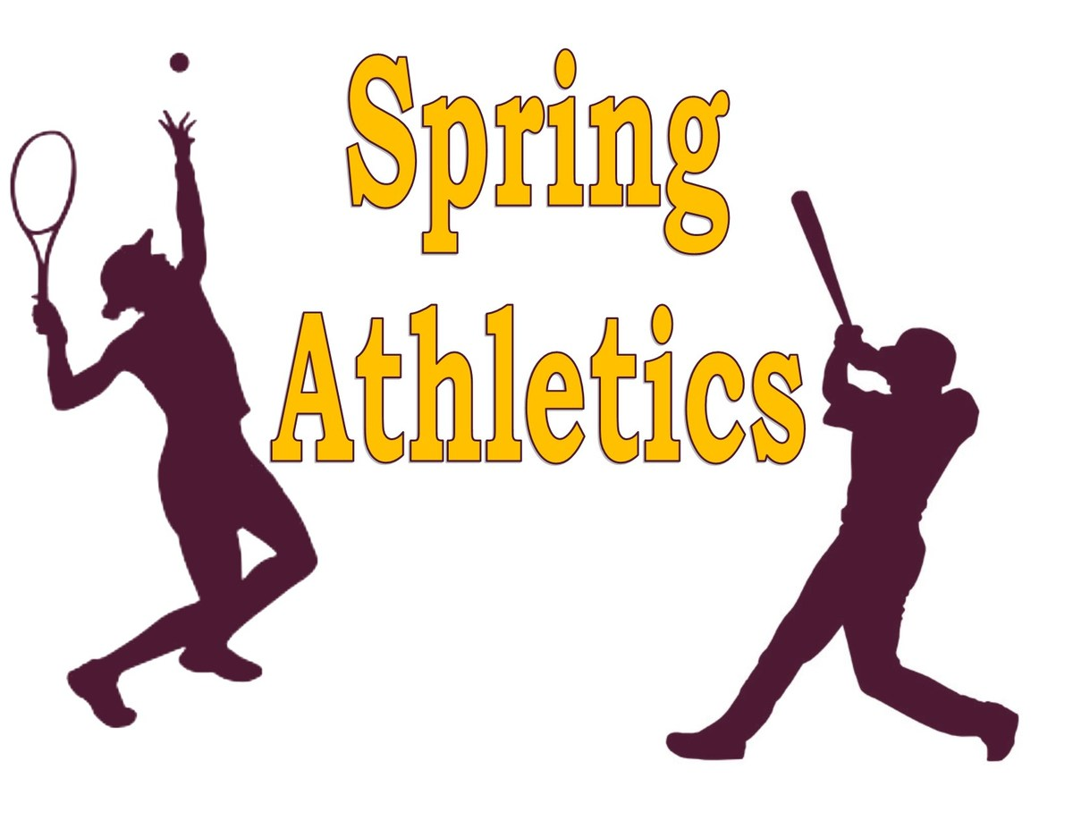 Image result for Spring Sports clipart