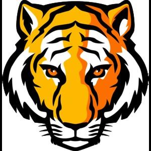 HK Tiger Mascot