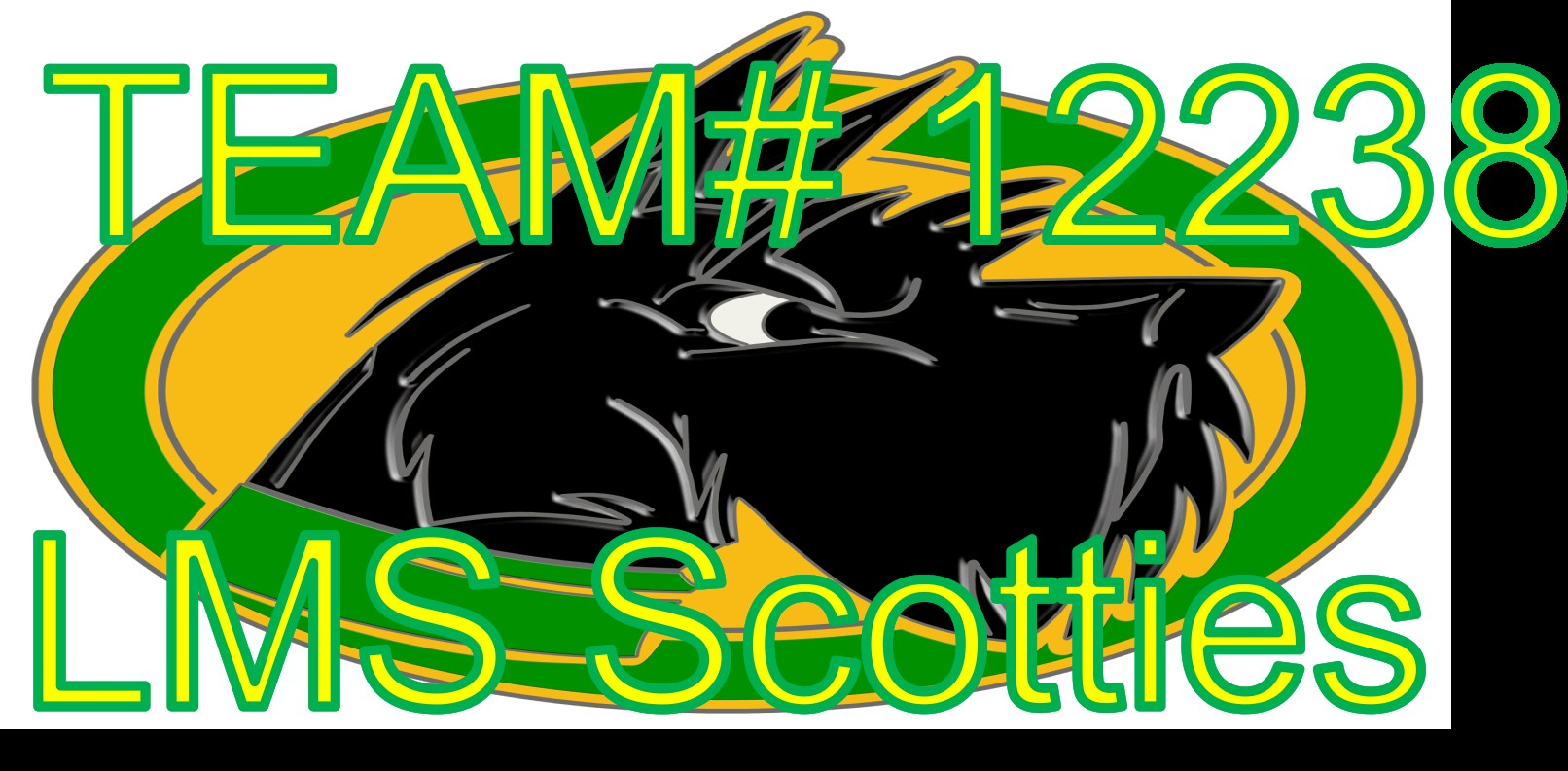 Team #12238 LMS Scotties