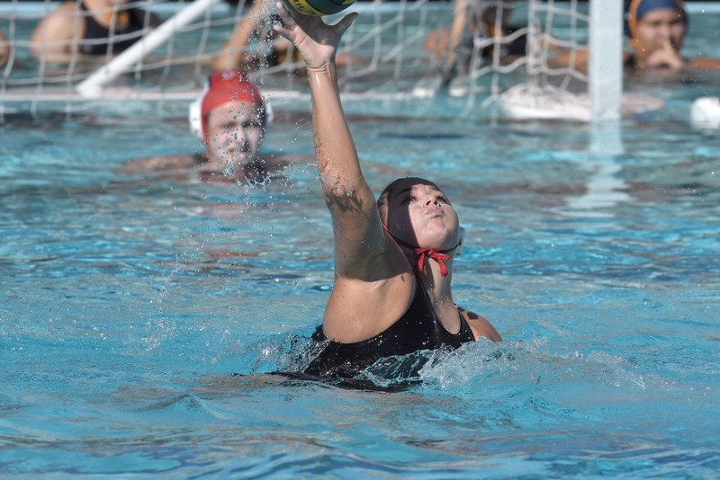 Girls Water polo made it to the CIF quarter finals! Thumbnail Image