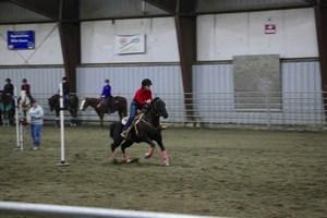 Equestrian 17.jpg