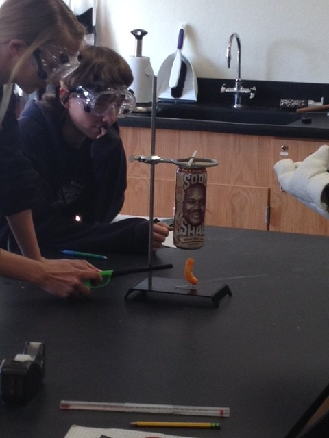 Today the freshman investigated the release of energy from one Cheeto.