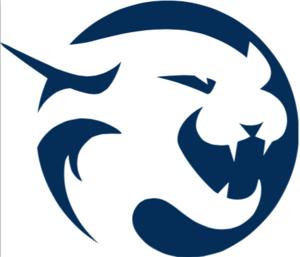 Wildcat Logo - NAVY.png