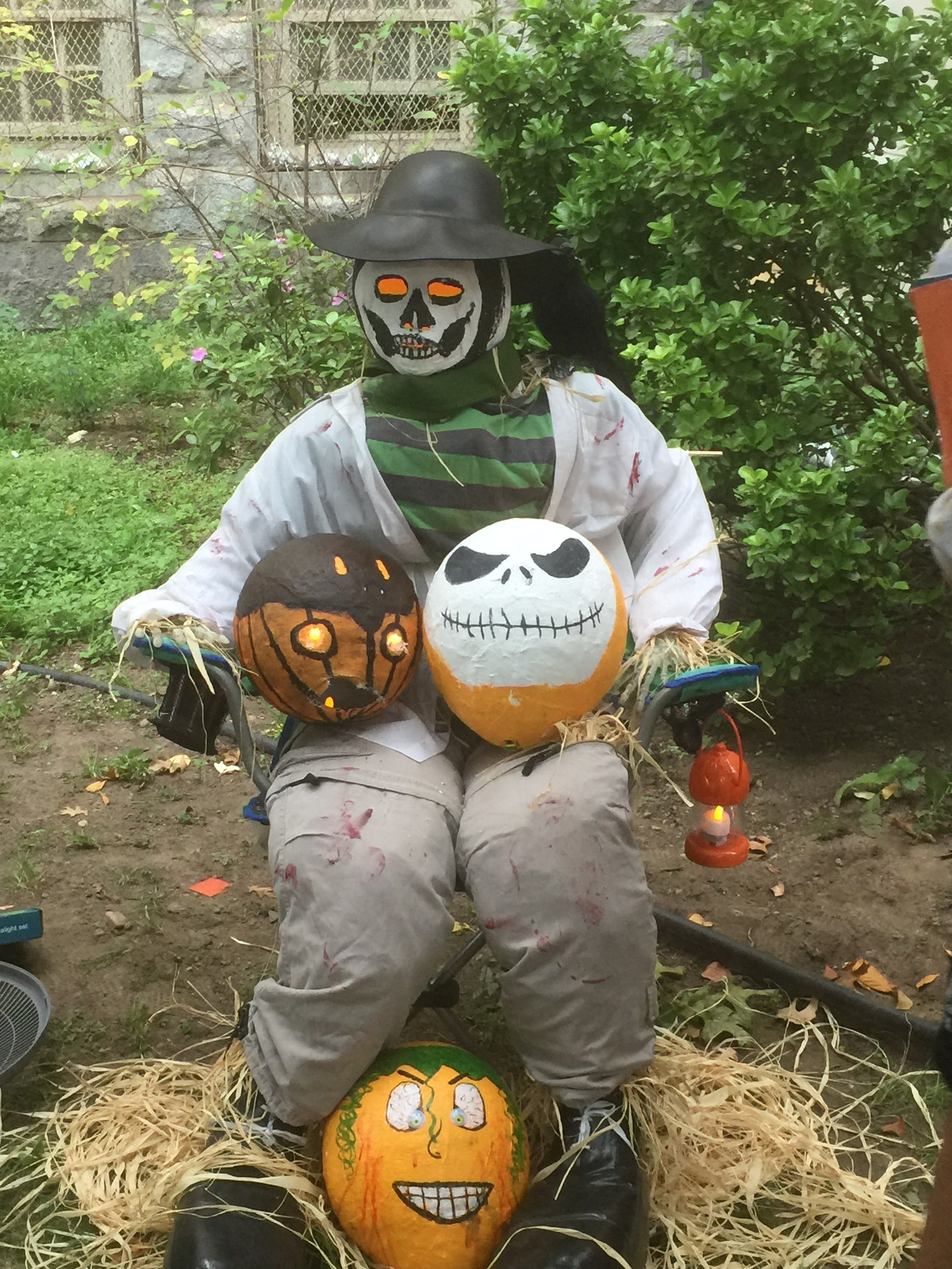 Seated scarecrow holding lantern and pumpkins.